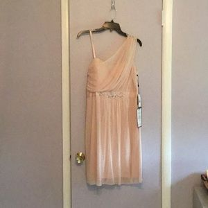 Cocktail Dress by Adrianna PAPELL in Blush SZ12